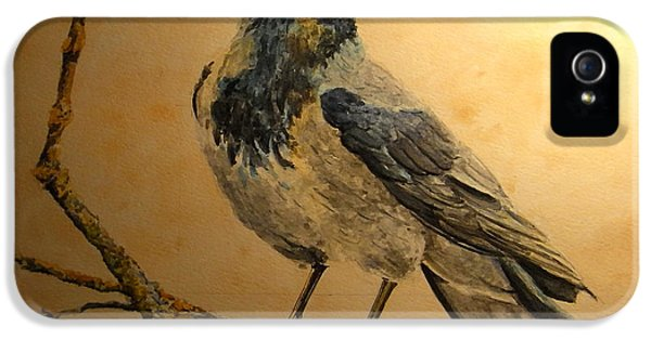 Hooded Crow IPhone 5 Case by Juan  Bosco