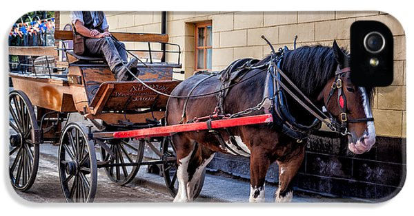 Bunting iPhone 5 Case - Horse And Cart by Adrian Evans