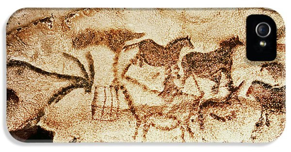 Horses And Deer From The Caves At Altamira, 15000 Bc Cave Painting IPhone 5 Case by Prehistoric