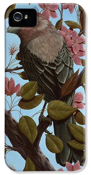 House Finch IPhone 5 Case