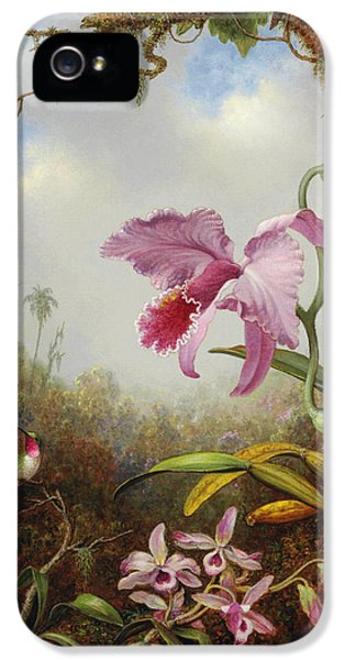 Orchid iPhone 5 Case - Hummingbird And Two Types Of Orchids by Martin Johnson Heade