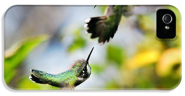 Hummingbirds Ensuing Battle IPhone 5 Case by Christina Rollo