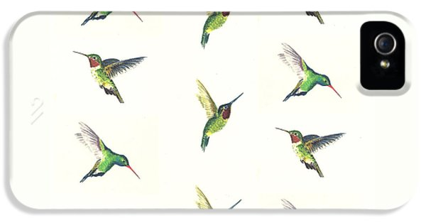 Hummingbirds Number 2 IPhone 5 Case by Michael Vigliotti