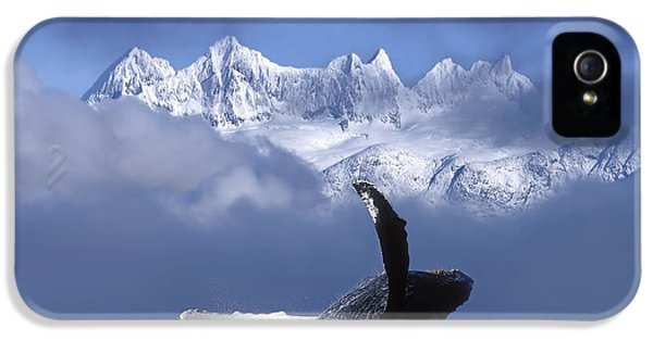 Humpback Whale Breaches In Clearing Fog IPhone 5 Case by John Hyde