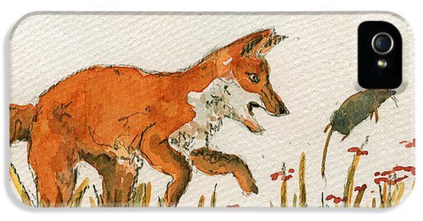 Mice iPhone 5 Case - Hunting Red Baby Fox by Juan  Bosco