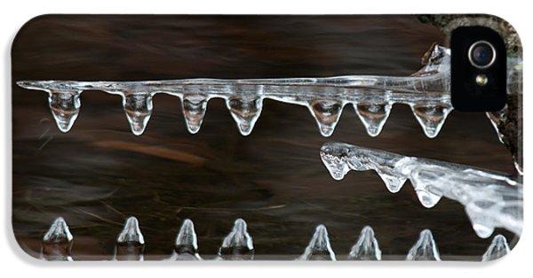 Ice Crocodiles IPhone 5 Case by Lara Ellis