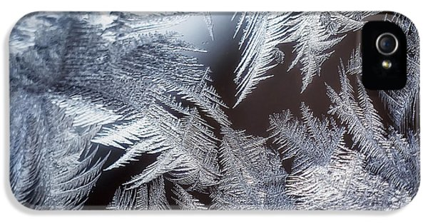 Ice Crystals IPhone 5 Case by Scott Norris