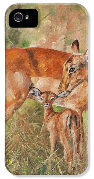 Impala Antelop IPhone 5 / 5s Case by David Stribbling
