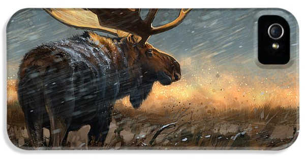 Incoming Storm IPhone 5 Case by Aaron Blaise