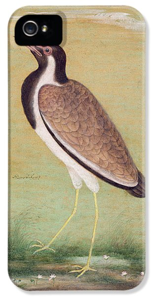 Indian Lapwing IPhone 5 Case by Mansur