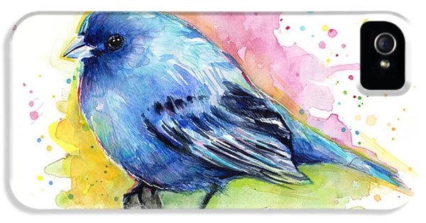 Indigo Bunting Blue Bird Watercolor IPhone 5 Case by Olga Shvartsur