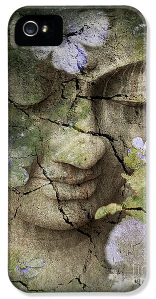 Garden iPhone 5 Case - Inner Tranquility by Christopher Beikmann