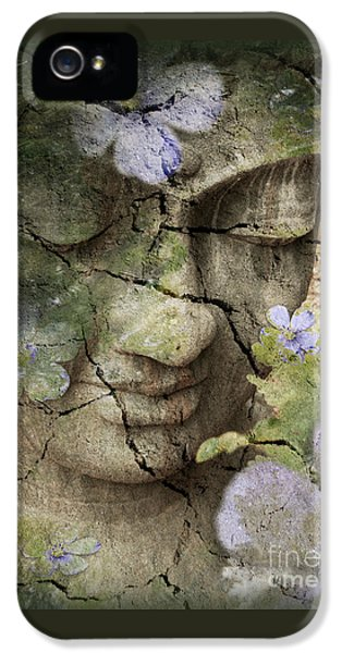 Inner Tranquility IPhone 5 / 5s Case by Christopher Beikmann