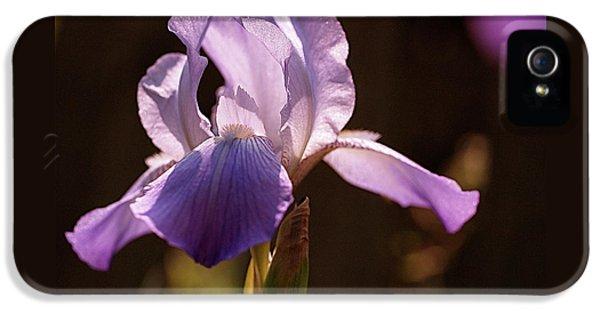 Iris Aglow IPhone 5 Case by Rona Black