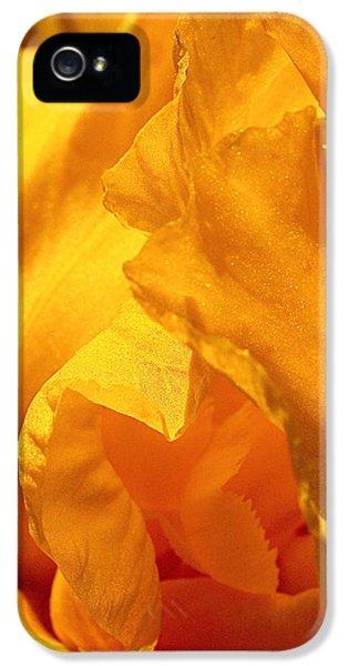 Iris Undulation IPhone 5 Case