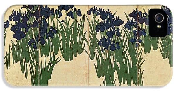 Irises IPhone 5 Case by Ogata Korin