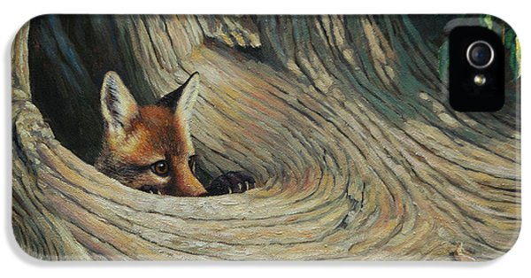Fox - It's A Big World Out There IPhone 5 Case by Crista Forest