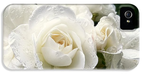 Ivory Rose Bouquet IPhone 5 Case by Jennie Marie Schell