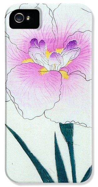 Japanese Flower IPhone 5 / 5s Case by Japanese School