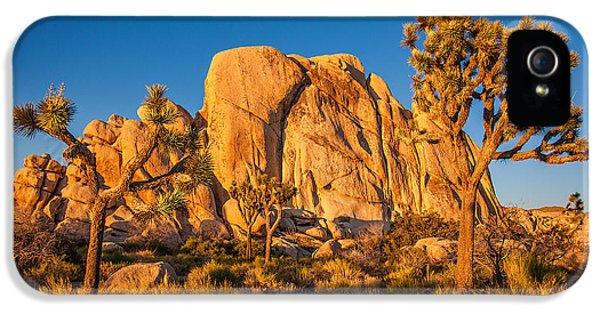 Desert iPhone 5 Case - Joshua Tree Sunset Glow by Peter Tellone