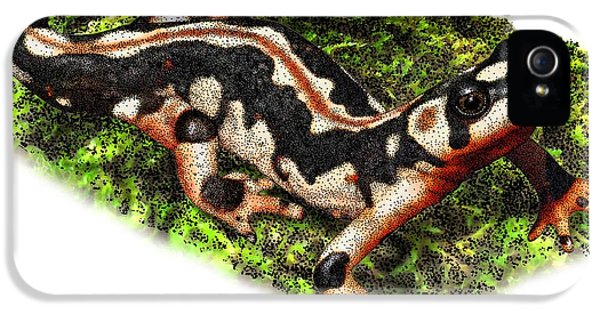 Kaisers Spotted Newt IPhone 5 Case by Roger Hall