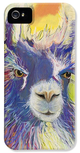 King Charles IPhone 5 / 5s Case by Pat Saunders-White