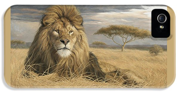 Lion iPhone 5 Case - King Of The Pride by Lucie Bilodeau