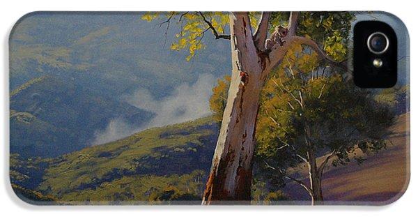 Koala In The Tree IPhone 5 Case by Graham Gercken