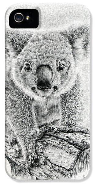 Koala iPhone 5 Case - Koala Oxley Twinkles by Remrov