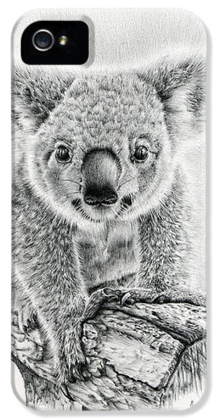 Koala Oxley Twinkles IPhone 5 Case by Remrov