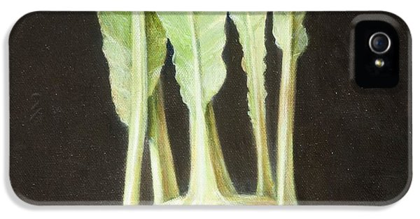 Kohl Rabi, 2012 Acrylic On Canvas IPhone 5 Case by Lincoln Seligman