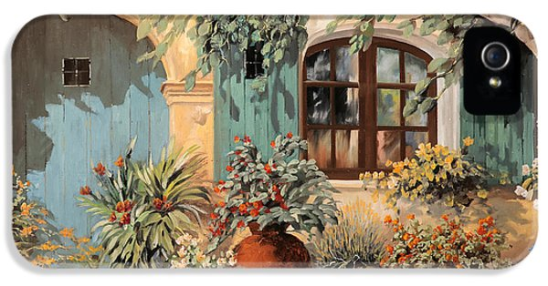 La Porta Azzurra IPhone 5 Case by Guido Borelli