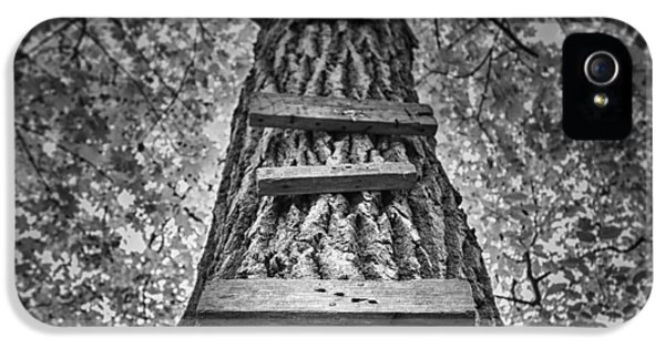 Ladder To The Treehouse IPhone 5 Case by Scott Norris