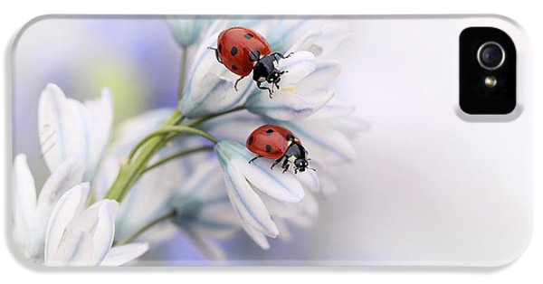 Ladybirds IPhone 5 Case