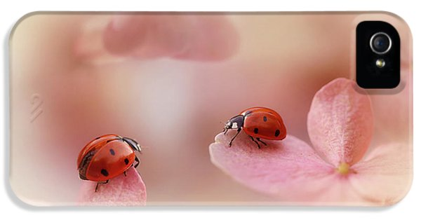 Ladybirds On Pink Hydrangea. IPhone 5 Case