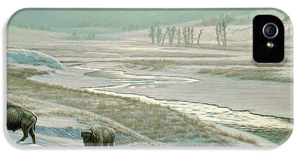 Buffalo iPhone 5 Case - Lamar Valley - Bison by Paul Krapf