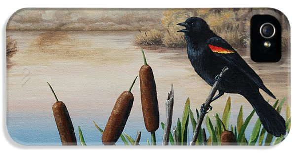 Blackbird iPhone 5 Case - Last Song by Crista Forest