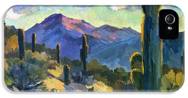 Late Afternoon Tucson IPhone 5 Case by Diane McClary