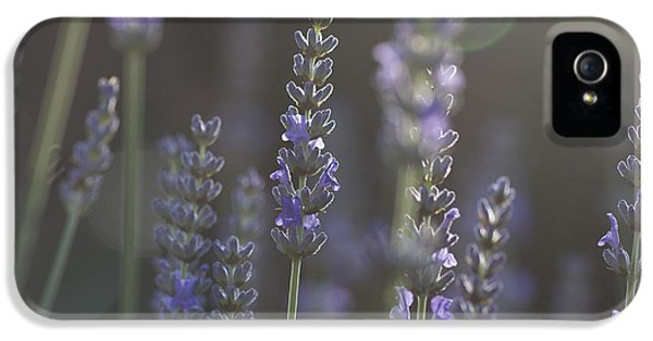 IPhone 5 Case featuring the photograph Lavender Flare. by Clare Bambers