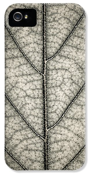 Leaf Texture In Sepia IPhone 5 Case by Elena Elisseeva
