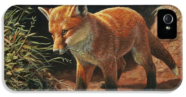 Red Fox Pup - Learning IPhone 5 Case by Crista Forest