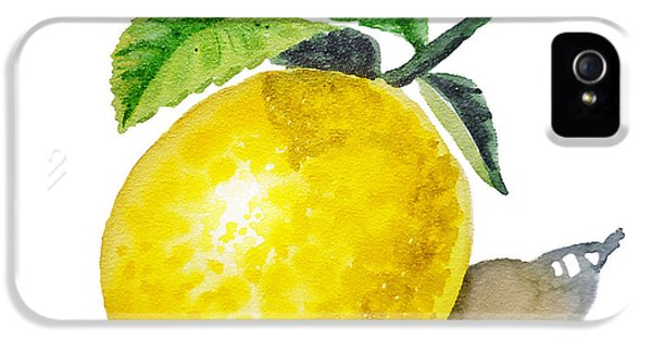 Artz Vitamins The Lemon IPhone 5 Case by Irina Sztukowski