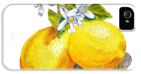 Lemon iPhone 5 Case - Lemons And Blossoms by Irina Sztukowski