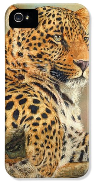 Wolves iPhone 5 Case - Leopard by David Stribbling