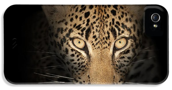 Leopard In The Dark IPhone 5 Case by Johan Swanepoel