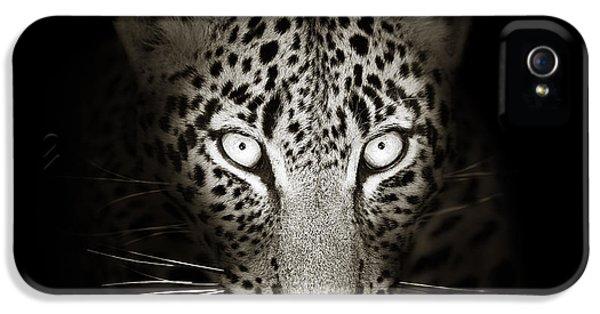 Cats iPhone 5 Case - Leopard Portrait In The Dark by Johan Swanepoel