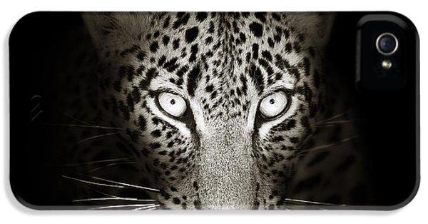 Leopard Portrait In The Dark IPhone 5 Case by Johan Swanepoel