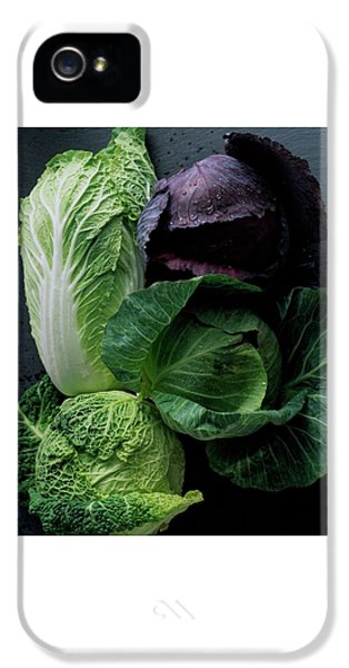 Lettuce IPhone 5 Case