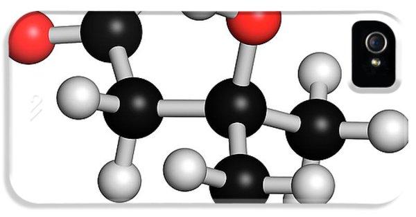 Leucine Metabolite Molecule IPhone 5 Case