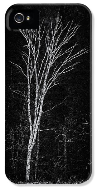 Life's A Birch No.2 IPhone 5 Case by Mark Myhaver